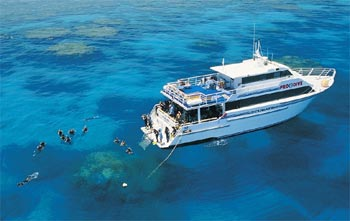 Dive the Outer Great Barrier Reef with PRO DIVE Cairns