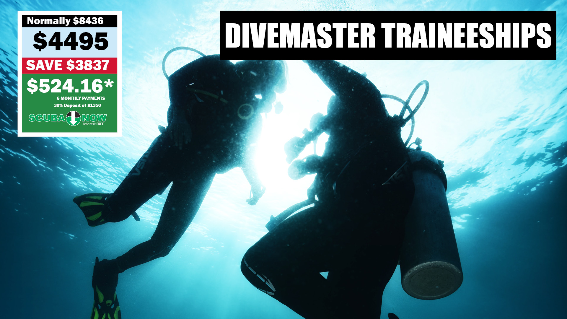 Divemaster Traineeship Program
