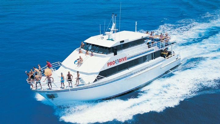 Scuba dive in great barrier reef cairns 3 days 2 nights 3 day 2 night liveaboard great - Pro dive cairns ...
