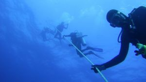 Students completing their openwater dives during a Learn to Dive Course with Pro Dive