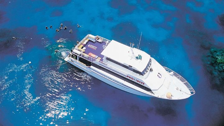 Courses and Prices - Mike Ball Dive Expeditions Liveaboard ...