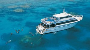 Scuba Diving the Great Barrier Reef with Pro Dive