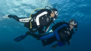Students Learning to Dive with Pro Dive Coogee