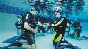 https://www.prodive.com.au/Central+Coast/Divemaster+/Assistant+Instructor+-+Central+Coast/1157