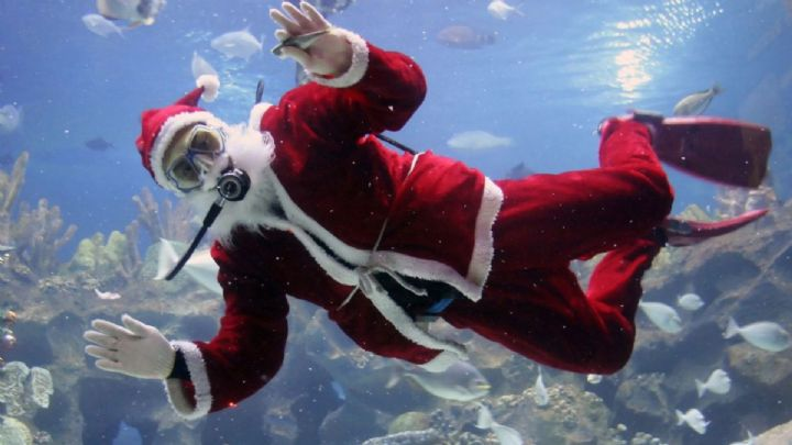 Christmas Gift Voucher - Give Scuba Diving this Christmas