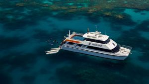 Poseidon Day Trip- Ex Port Douglas / Cairns Transfers Available