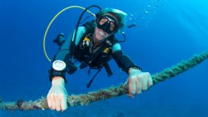 Deluxe Weekday Learn to Dive Course