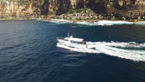https://www.prodive.com.au/Sydney+-+Manly/Boat+Dives/Sydney+Double+Boat+Dive+-+Sydney+-+Manly/240