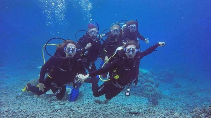 Learn to Dive With PRO DIVE Magnetic Island