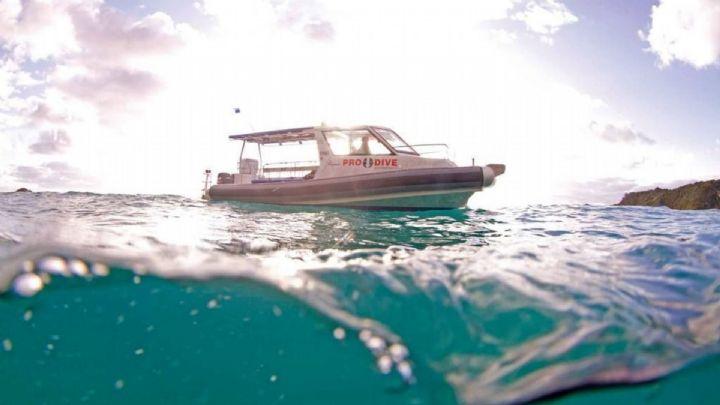 Boat Dives