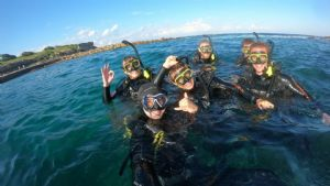 https://www.prodive.com.au/Sydney+-+Coogee/Openwater+Courses/PRO+DIVE+Premium+Open+Water+Course+Weekend+-+Sydney+-+Coogee/1580