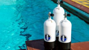 https://www.prodive.com.au/Sydney+-+Manly/Compressor+and+Air+Fill+Operator/Inspect+and+fill+SCUBA+cylinders+-+Sydney+-+Manly/1471