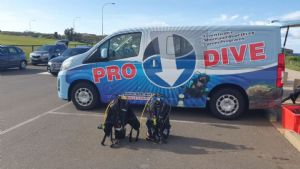 https://www.prodive.com.au/Sydney+-+Coogee/Equipment+Hire/Dive+Site+Hire+-+Sydney+-+Coogee/1611