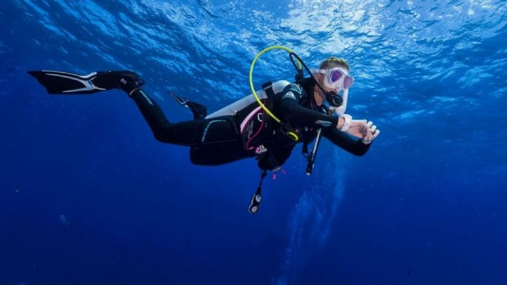 Scuba Diving Traineeship