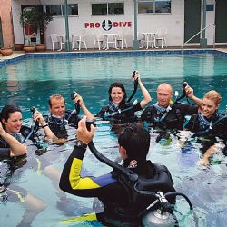 5 Day PRO DIVE Learn to Scuba Dive Course